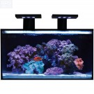 20 NUVO Fusion Aquarium and Stand - Innovative Marine