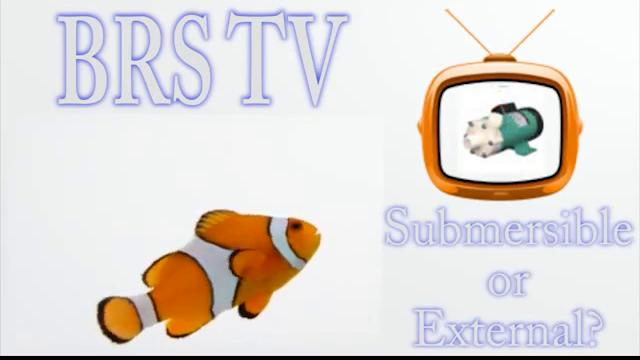 Submersible vs External
